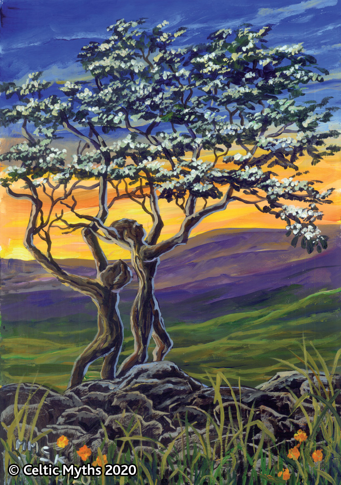 The Fairy Tree II - Prints
