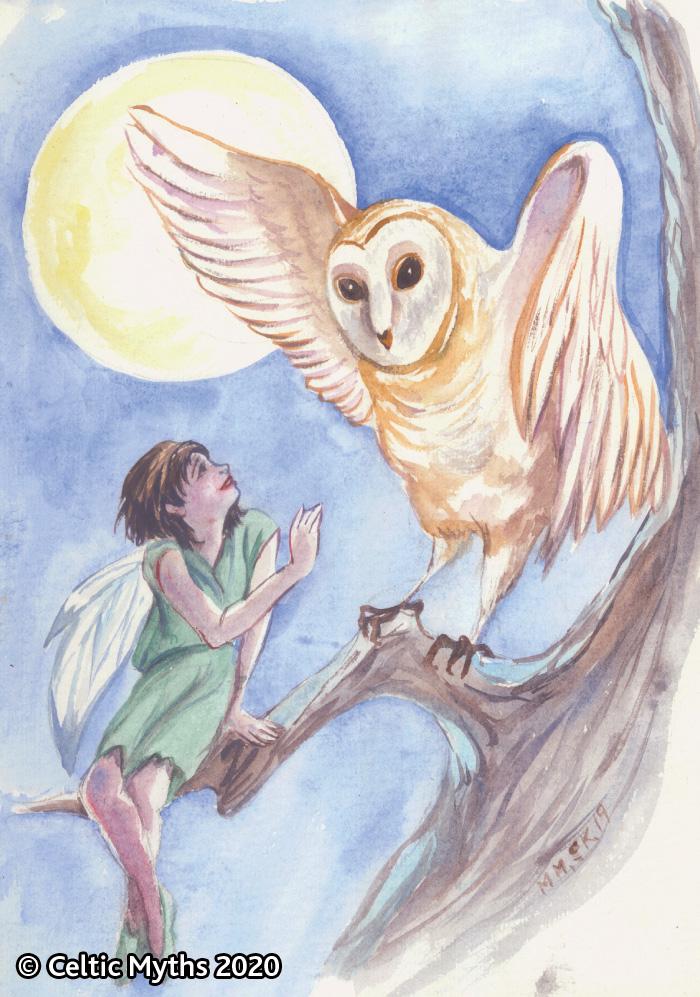 The Owl - print