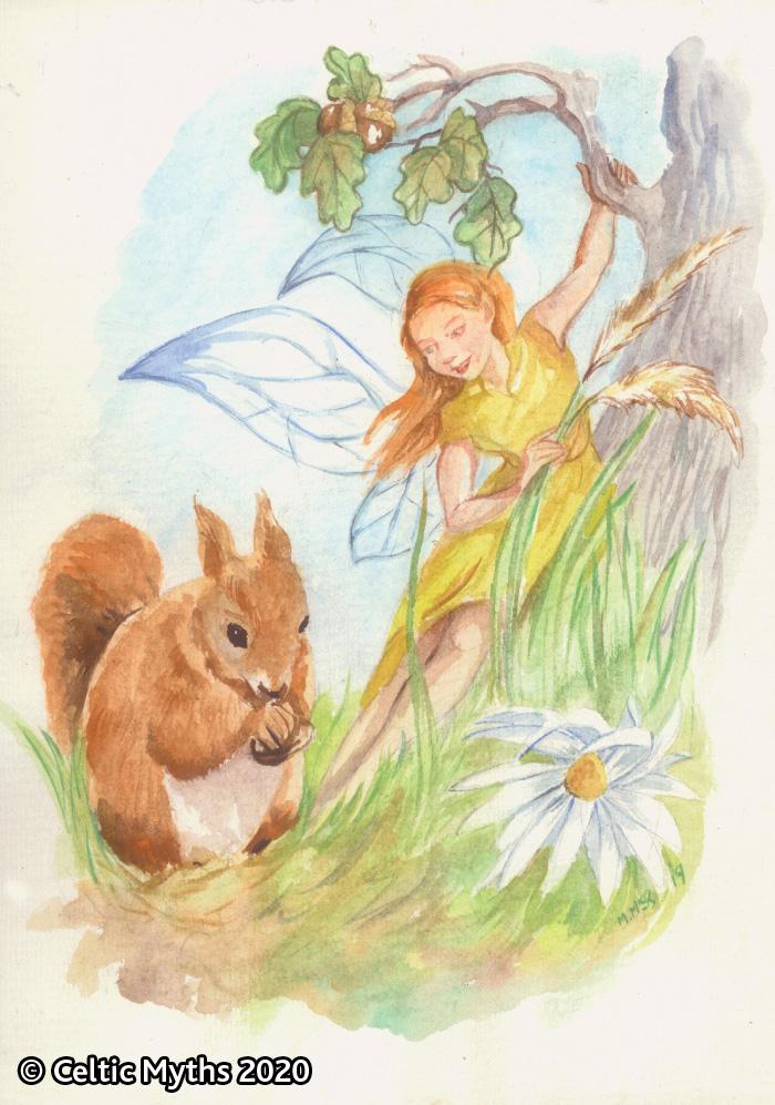 The Squirrel - print