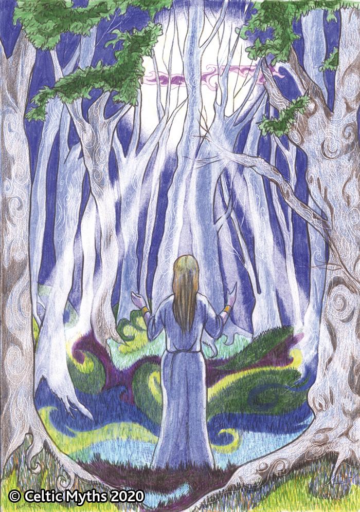 Tree Lore - print