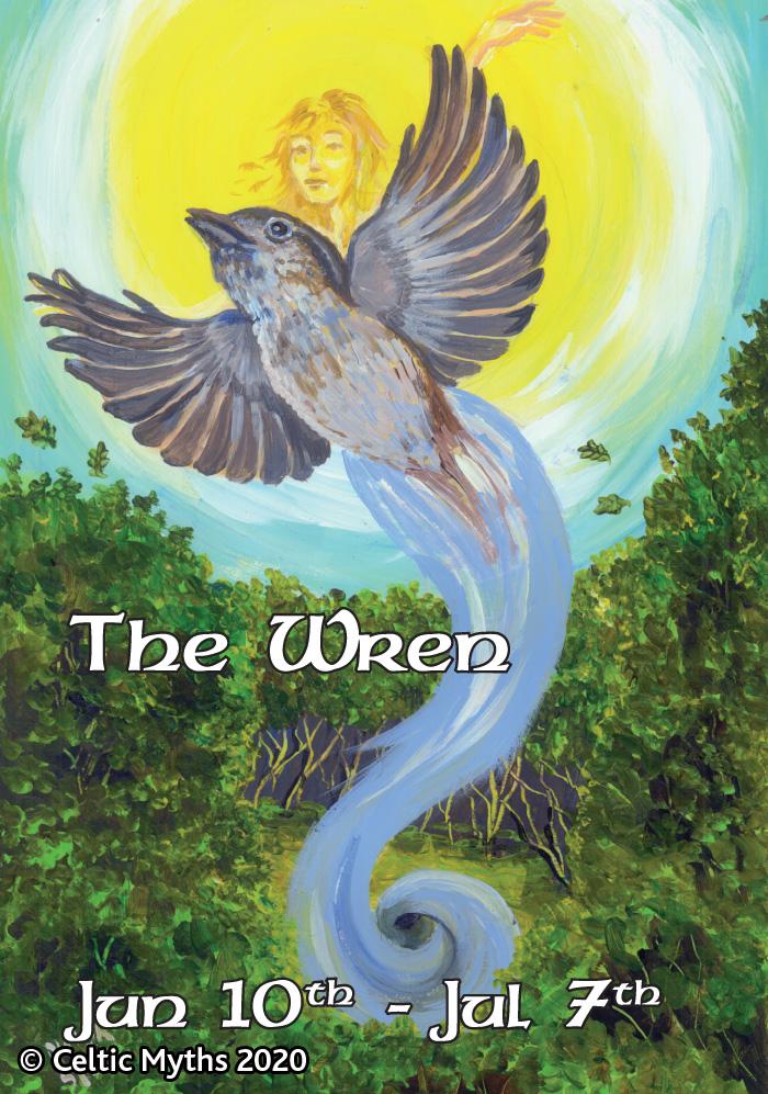 The Wren - print